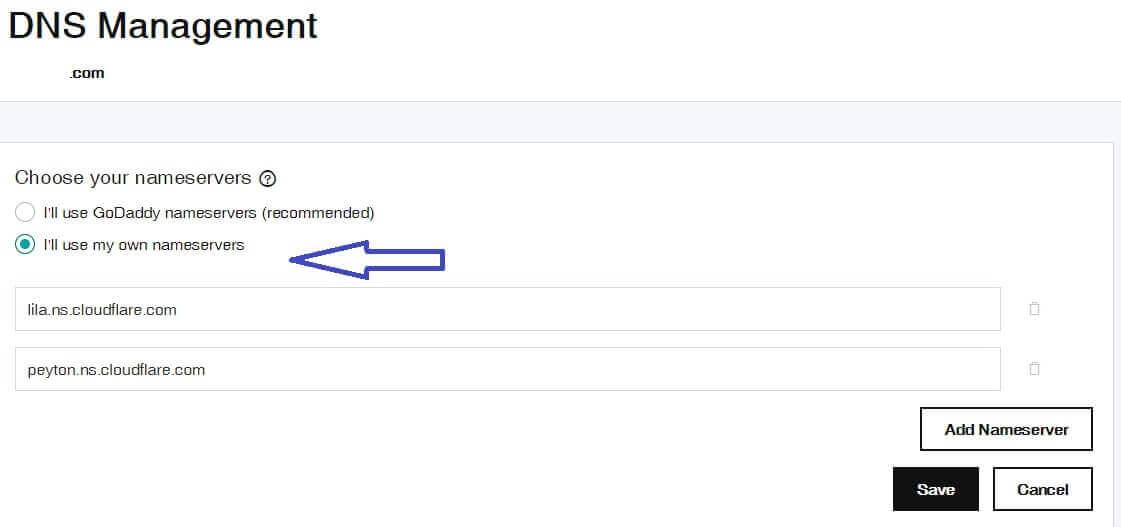 enter your DNS nameserver on godaddy
