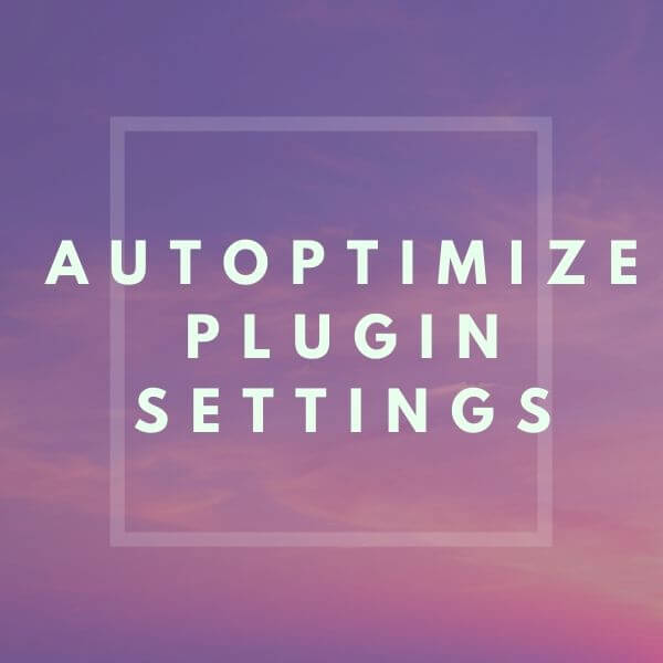 How to Properly Configure Autoptimize Plugin Settings 2020